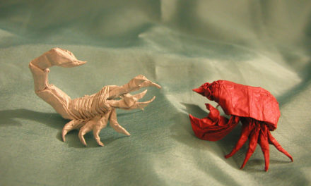 A Game of Two Halves – Crab vs Scorpion (By Daye Kaniel)